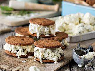 Mint chocolate chip ice cream sandwiches