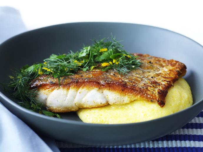 """Barramundi is perfect for this [fish on polenta with dill gremolata](https://www.womensweeklyfood.com.au/recipes/fish-with-polenta-and-dill-gremolata-9255