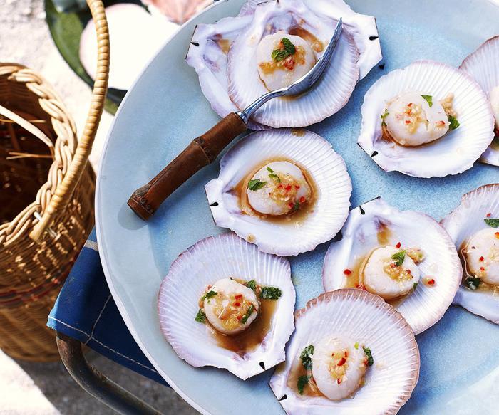 scallops in shell