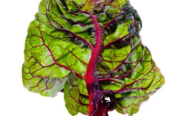 Five of the best: Winter greens