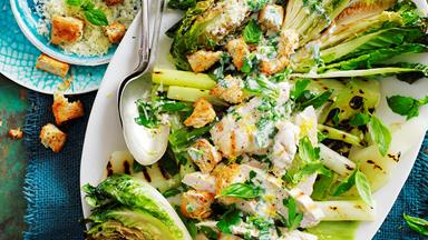 Grilled chicken with warm cos lettuce salad