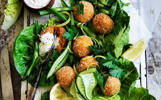 Carrot and harissa falafel with tahini yoghurt