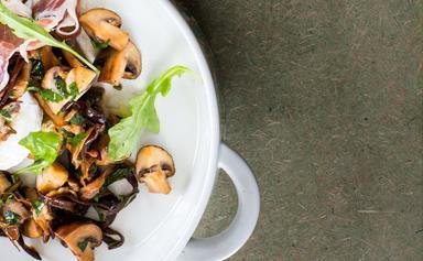 Warm mixed mushroom salad with rocket and mozzarella on toasted ciabatta