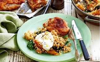 Cauliflower rice and spiced chicken