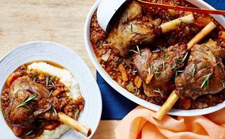 Lamb shanks with lentil ragout