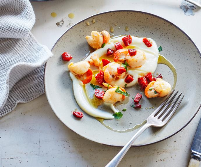 Pan-fried scallops with cauliflower purée and chorizo