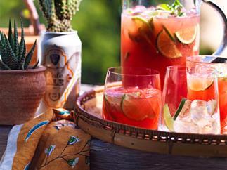 Gin and watermelon fizz