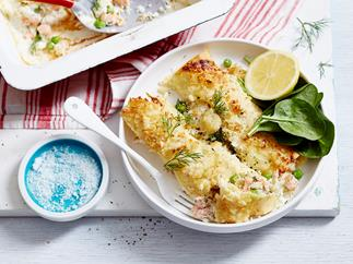 creamy cauliflower cannelloni