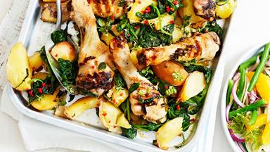 Italian char-grilled chicken drumsticks