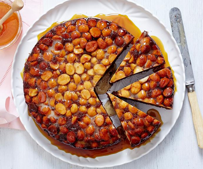 macadamia nut cake recipe easy