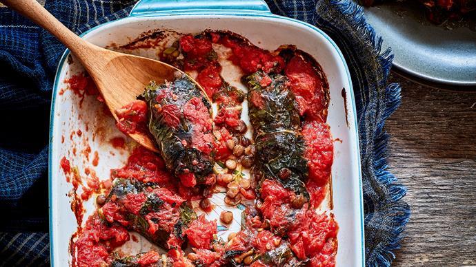 Silverbeet and lentil rolls