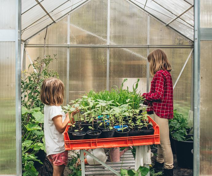 Green thumbs Bella and Macy can often be found snacking in the raspberry patch, picking wildflowers or tending to the tomato and corn seedlings in the glasshouse.
