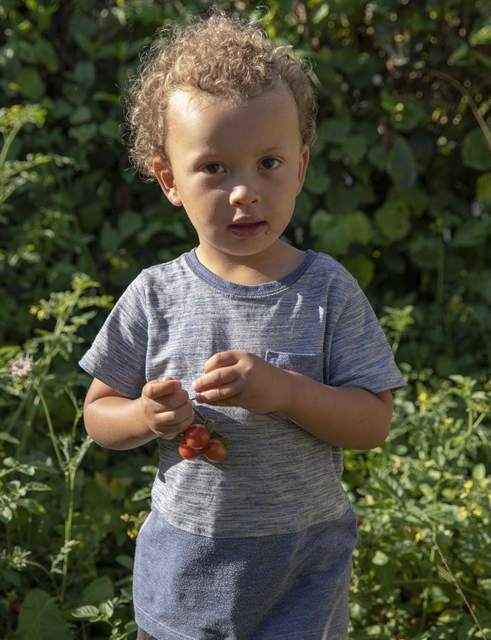 *Grandson Kian picks and eats vine-ripened tomatoes from the garden*