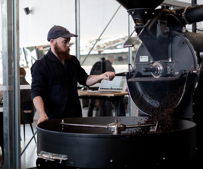 Nathan Taylor on the re-conditioned 1960s UG22 Probat at Ozone's Auckland roastery.