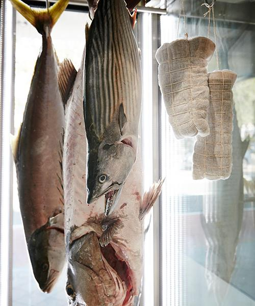 Fish hanging in static refrigeration