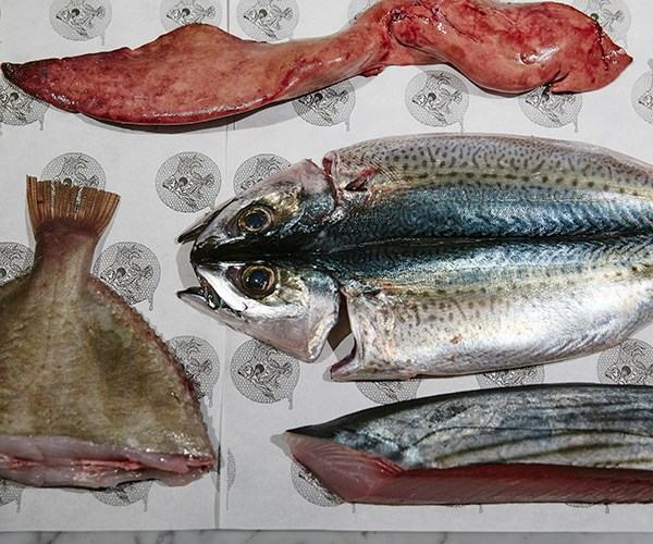 Cuts of fish that have been prepped by the team
