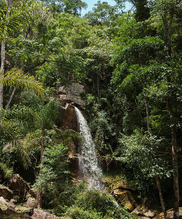 A waterfall in the reserve