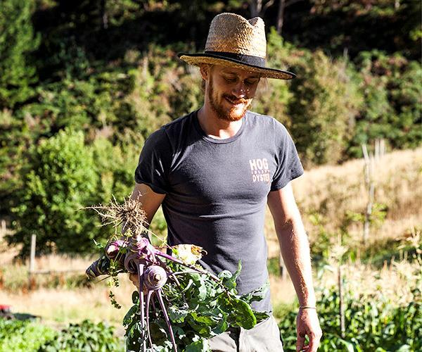 """**BEST NEW TALENT FINALIST: OLIVER EDWARDS** <br><br> Curiosity drives Oliver Edwards to get his hands dirty. He left Cumulus Inc to dig for vegetables on an Adelaide Hills farm, then find inventive ways to present them as star attractions at [The Summertown Aristologist](https://www.gourmettraveller.com.au/dining-out/restaurant-reviews/the-summertown-aristologist-7069