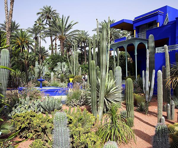 Musée Yves Saint Laurent Marrakech (photo: Getty)