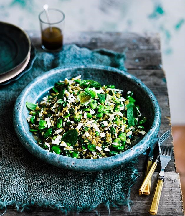 "**[Danielle Alvarez's farro with broad beans and ricotta salata](https://www.gourmettraveller.com.au/recipes/chefs-recipes/farro-with-broad-beans-ricotta-salata-mint-and-lovage-8350|target=""_blank"")**"