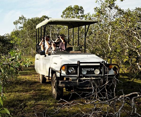 An open-top safari drive