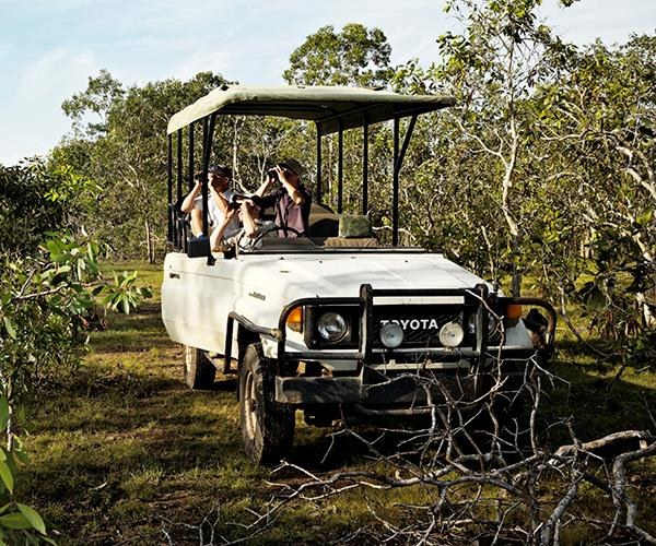 An open-top safari drive