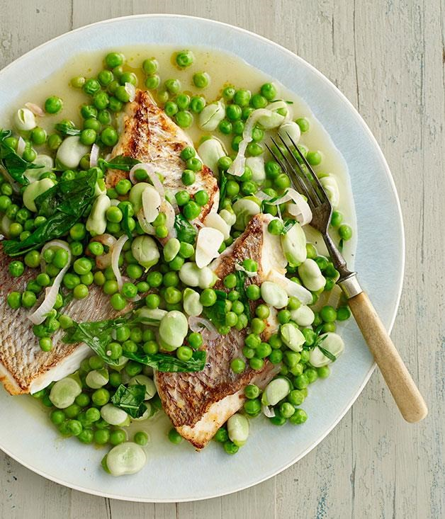 """**[Pink snapper with braised peas and broad beans](https://www.gourmettraveller.com.au/recipes/fast-recipes/pink-snapper-with-braised-peas-and-broad-beans-13400