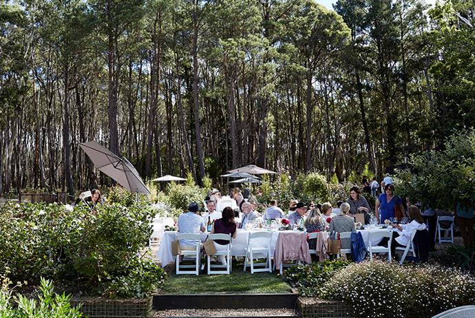 2018's Regional World's Longest Lunch — Oak and Monkey Puzzle, Daylesford