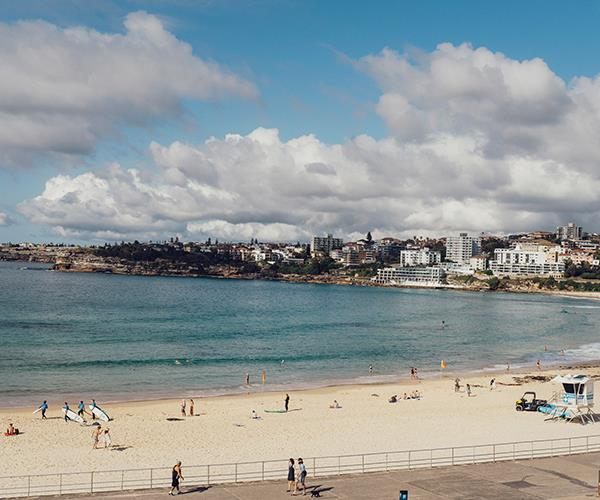 The view of Bondi Beach from Sean's
