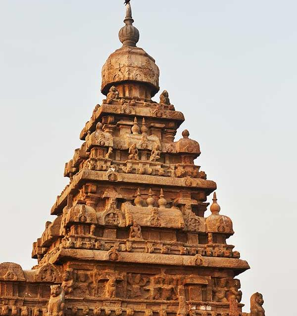 Tamil Nadu travel guide: a guide to South India   Gourmet Traveller