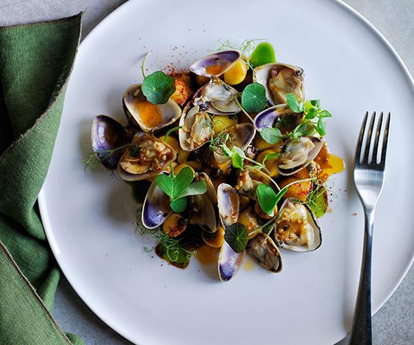 "[Monty Kulodrovic's (Icebergs Dining Room & Bar) gnocchi with spicy pipi sauce and wild herbs](http://www.gourmettraveller.com.au/recipes/chefs-recipes/gnocchi-with-spicy-pipi-sauce-and-wild-herbs-8324|target=""_blank"")"