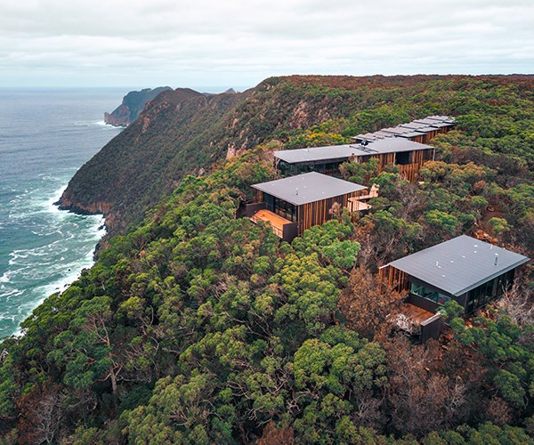 """The peninsula is busy with projects opening in the next 18 months on privately owned tracts of land: Remarkable Lodge by Baillie Lodges (Southern Ocean Lodge, Longitude 131), and a retreat at Port Arthur by the Federal Group (Saffire Freycinet).    The private lodges on the Three Capes Track are a """"test bed"""", says Godfrey, for the next project by sister company, the Australian Walking Company: a four-day guided (and pack-free) walk on the 61-kilometre Kangaroo Island Wilderness Trail. Two private lodges and three restored lighthouse cottages at Cape du Couedic are due to open in October to coincide with the park's centenary.   On the last day, when we reach the creamy sands of Fortescue Bay, a whale and her calf are lolling offshore. I'm handed a glass of Tasmanian sparkling and, feeling brave, I peel off layers of thermals and dive into the icy blue. If this is shinrin-yoku, I'll go another round.    *(Photo: Luke Tscharke)*"""