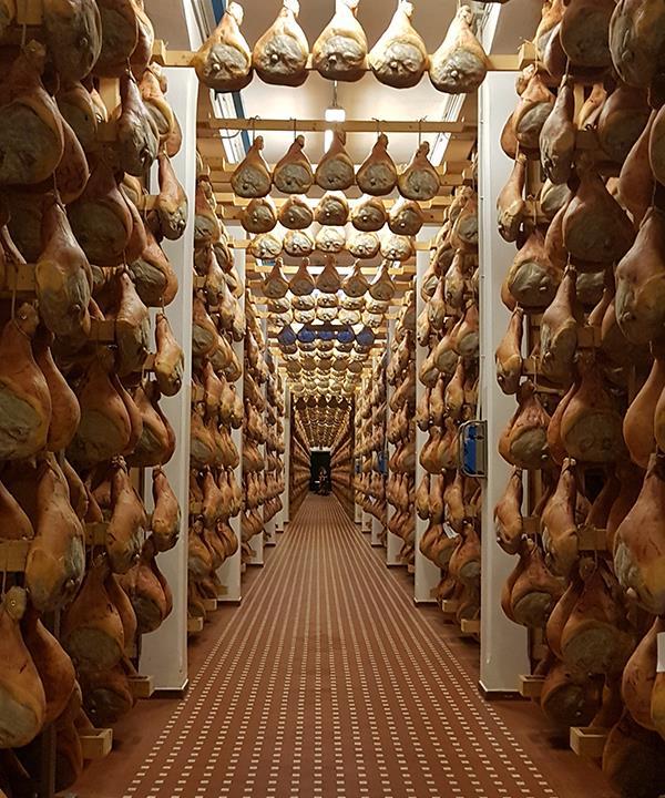 "A ""tunnel"" of hams in Tosini."