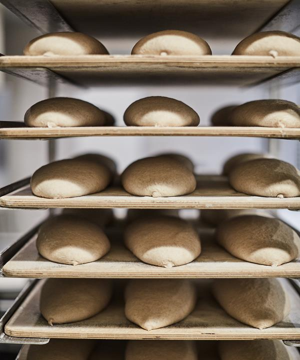 *Loaves of bread waiting to be proofed.*