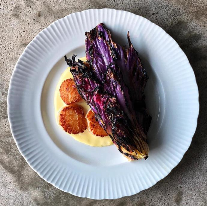 "Seared scallops, red dragon Napa cabbage and lardo Hollandaise. Photo: [@barkismet](https://www.instagram.com/barkismet/|target=""_blank""|rel=""nofollow"")"
