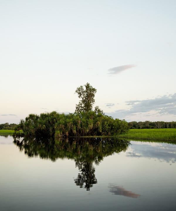 Kakadu wetland views