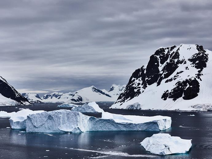 Icebergs at Danco Island.
