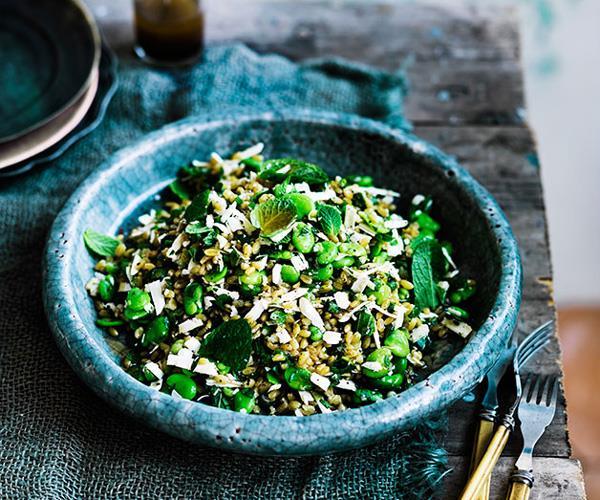 "**[Danielle Alvarez's farro with broad beans, ricotta salata, mint and lovage](https://www.gourmettraveller.com.au/recipes/chefs-recipes/farro-with-broad-beans-ricotta-salata-mint-and-lovage-8350|target=""_blank"")**"