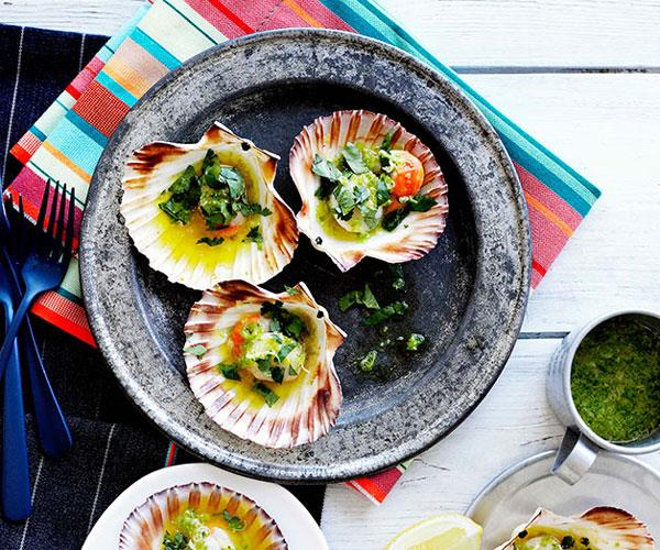 "**[Grilled scallops in the shell](https://www.gourmettraveller.com.au/recipes/browse-all/grilled-scallops-in-the-shell-10365|target=""_blank"")**"