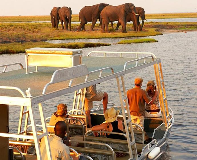 """Get up close and personal with Africa's wildlife on the Zambezi Queen river boat. *Photo: [@zambeziqueencollection](https://www.instagram.com/zambeziqueencollection/