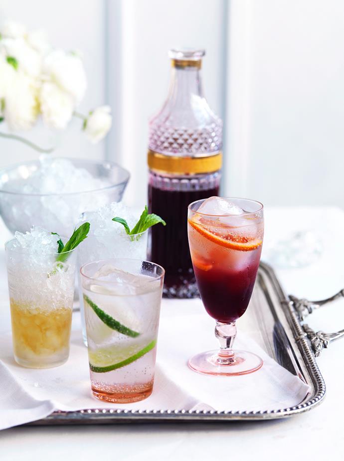 "[**Gin Rickey**](https://www.gourmettraveller.com.au/recipes/browse-all/gin-rickey-10913|target=""_blank"") <br> *Photo: William Meppem*"