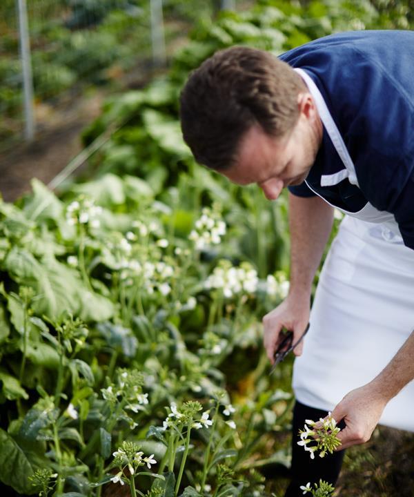 Dan Hunter at work in the garden.