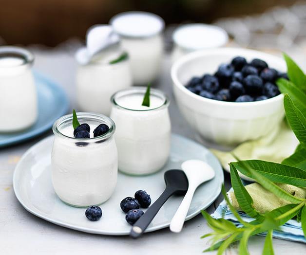 "**[Pot-set yoghurt with lemon verbena and blueberries](https://www.gourmettraveller.com.au/recipes/chefs-recipes/pot-set-yoghurt-with-lemon-verbena-and-blueberries-8169|target=""_blank"")**"