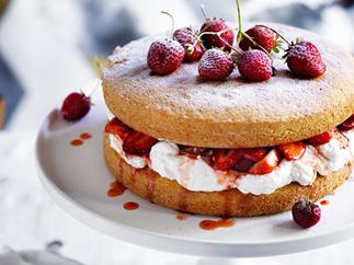 25 sponge cakes, in all forms