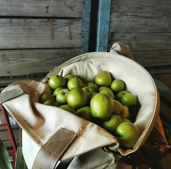 Explore the regional idylls of Orange and meet the local makers of produce, chefs and farmers.