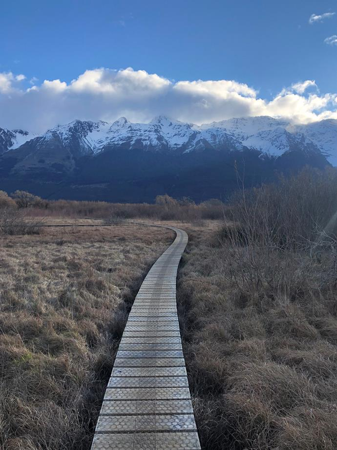 One of the many walking tracks in Glenorchy.