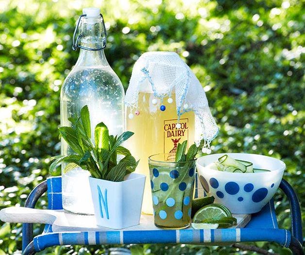 """[**Ginger cordial with mint, lime and cucumber**](https://www.gourmettraveller.com.au/recipes/browse-all/ginger-cordial-with-mint-lime-and-cucumber-10670 target=""""_blank"""")"""