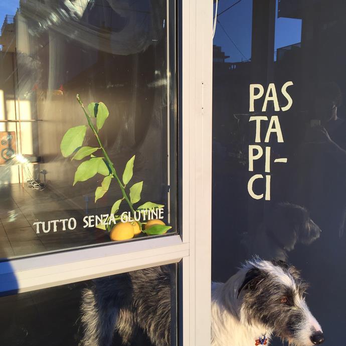 Lupa at the entrance to Pasta Pi-Ci.