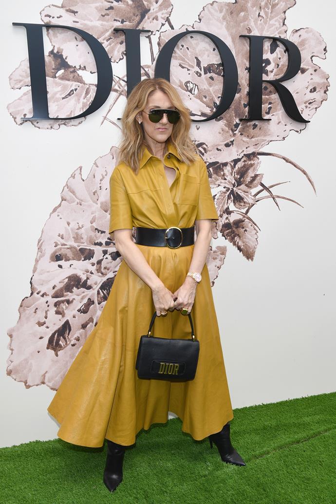 Celine Dion at Dior