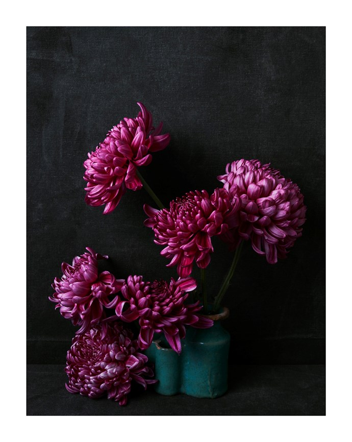 Dahlias in inkwell from Marrakech by Hugh Stewart, from $1,100.